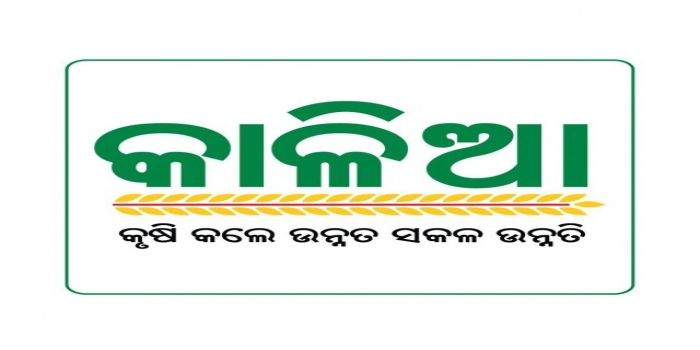 Naveen Govt Reduced KALIA Assistance to Rs 4,000 from Rs 10,000